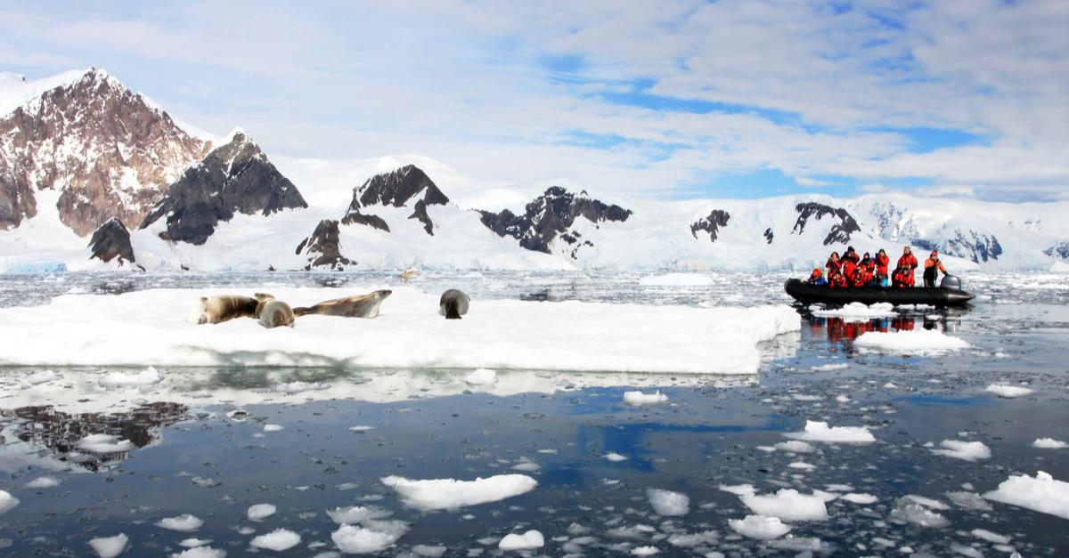 arktiset alueet ikiroudan sulaminen ravintoverkot turkijoita
